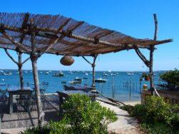 dégustation d'huîtres au village de l'herbe, presqu'île du Cap Ferret