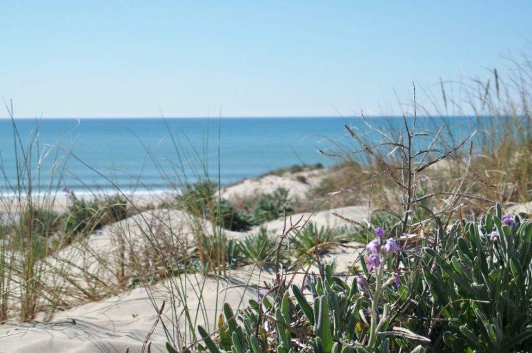 la plage sauvage du Porge océan Gironde